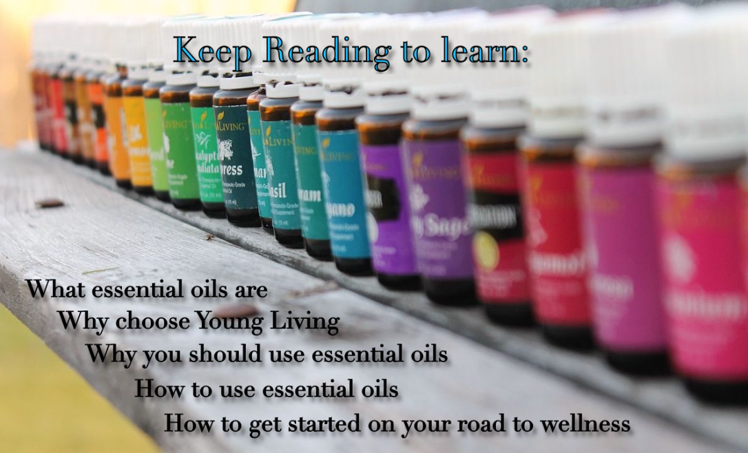 Spectrum-of-Young-Living-Oils.png